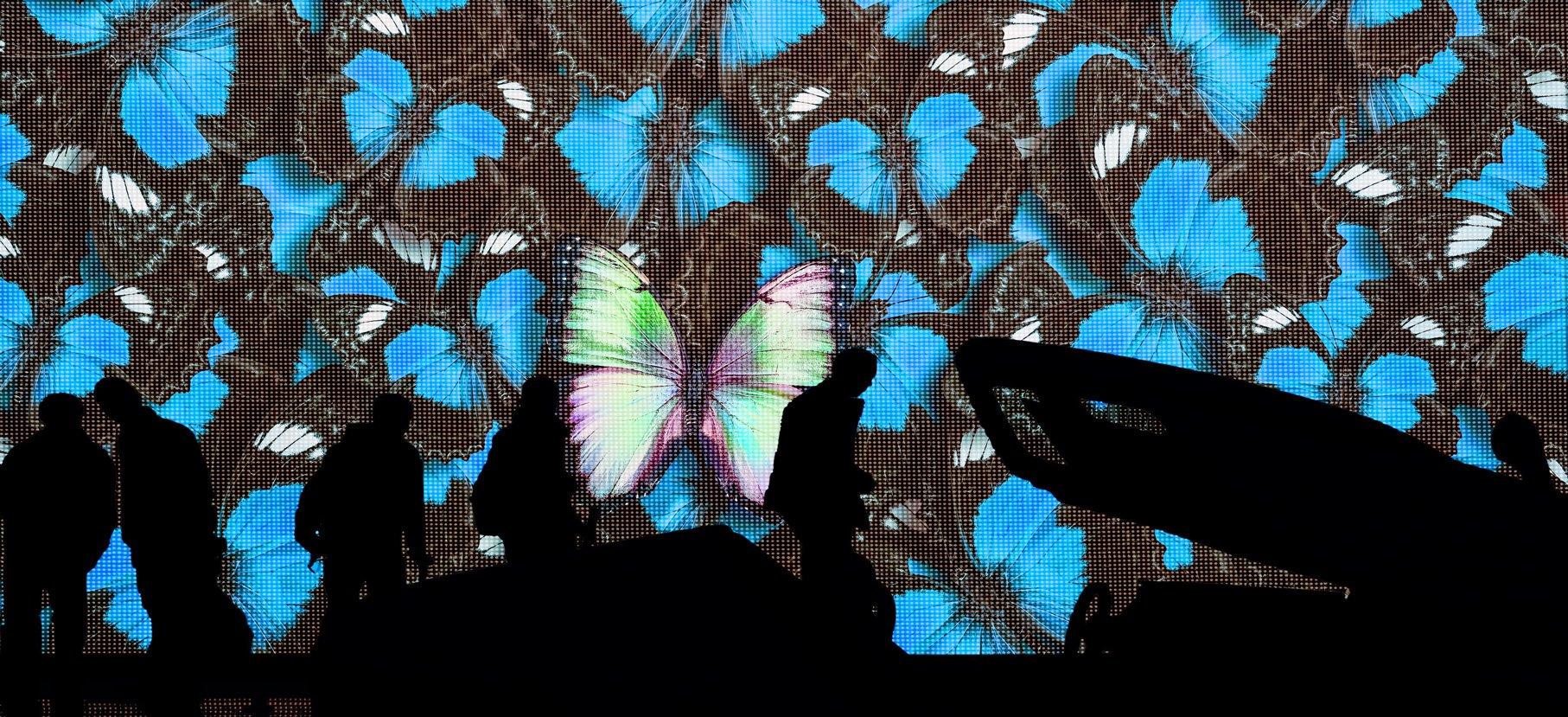 Farfalle proiettate su videowall di una fiera automotive